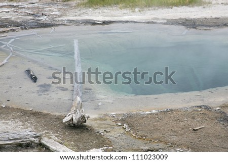 Dead tree in colorful composition of hot springs in Yellowstone National Park, Montana, Wyoming, USA - stock photo
