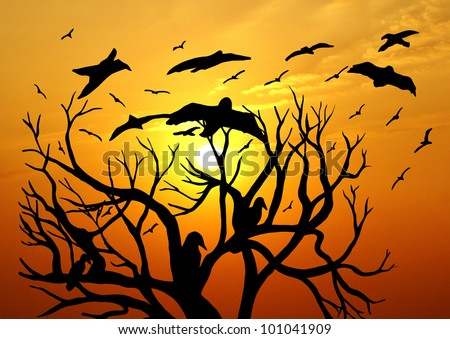 Dead Tree Silhouette - stock photo