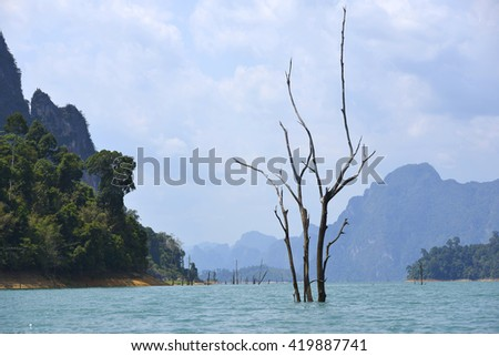 dead tree sticking out of the water from Lake National Parc Khao lak - stock photo