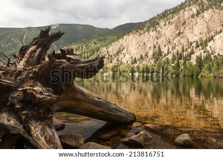 Dead tree trunk and roots in Cottonwood lake in the valley on clear calm day with the lake stretching off to a distant kayaker on the lake - stock photo