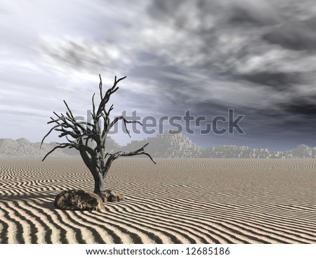 Dead tree with dreary gray sky on desert sand.