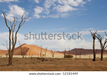 Dead trees and dunes in the Deadvlei - stock photo