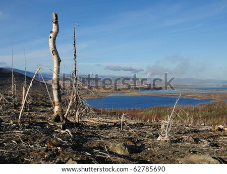 Dead trees near to metallurgical factories. - stock photo