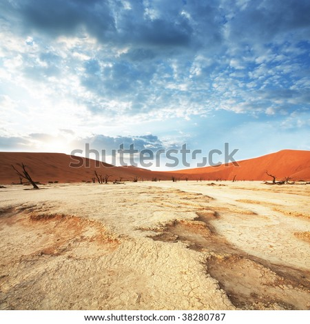 Dead valley in Namibia - stock photo