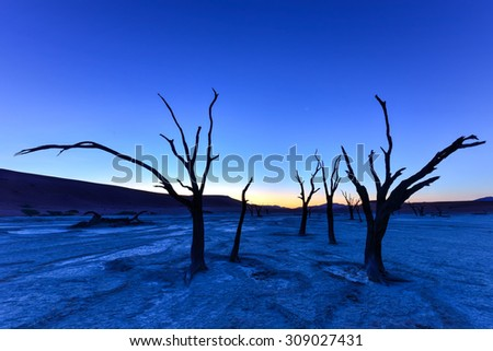 Dead Vlei at dusk in the southern part of the Namib Desert, in the Namib-Naukluft National Park of Namibia. - stock photo