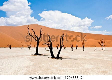 Dead Vlei in Sossusvlei Namibia - stock photo