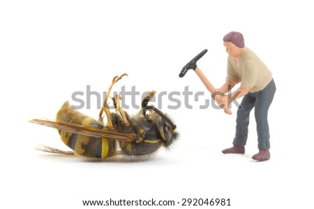 Dead wasp with miniature figurines, isolated on white - stock photo