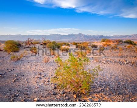 Death Valley National Park, California, USA - stock photo