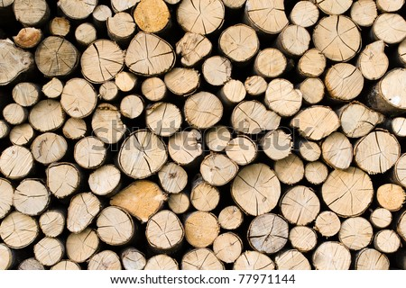 Deatil of pile of wooden logs - stock photo
