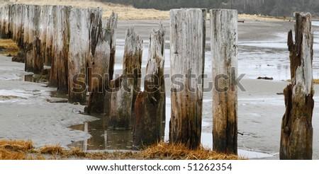Decaying wharf pilings along the sea coast - stock photo