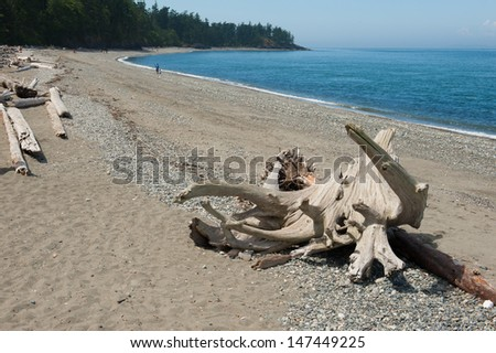 Deception Point beach on Whidbey Island - stock photo