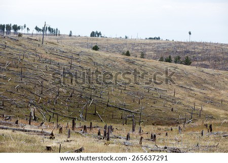 Decimated deforested hillside slopes with the remnants of felled tree trunks in a conceptual image of loss of trees and forests affecting the ecology - stock photo