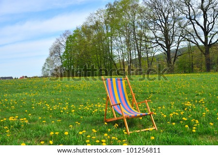 Deck chair in the garden with yellow flowers