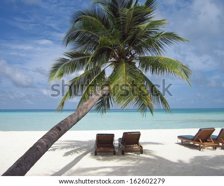 deck chair under a palm-tree on a tropical beach - stock photo