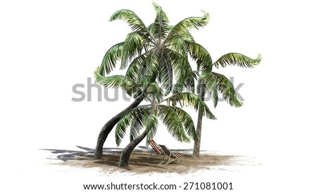 deck chairs under palm trees separated on white background