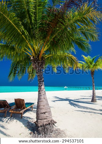 Deck chairs under umbrellas and palm trees on a tropical beach - stock photo