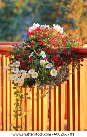 Deck rail flower basket - stock photo