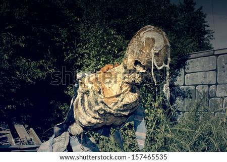 Decomposed skeleton - stock photo