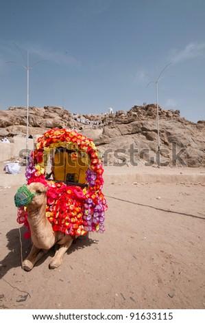 Decorated camel at Mount Arafat (or Jabal Rahmah) in Saudi Arabia. - stock photo