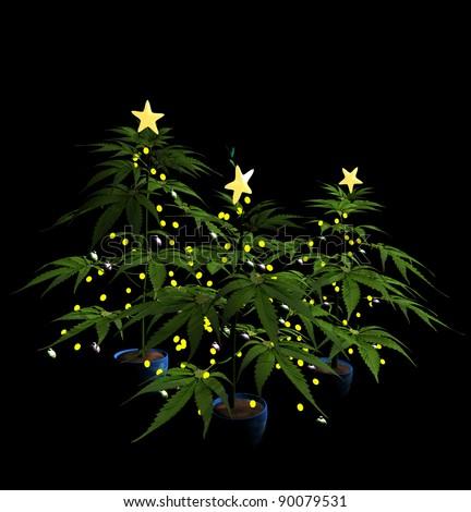 Decorated Christmas Marijuana Trees.  Isolated. Bah Humbug - stock photo