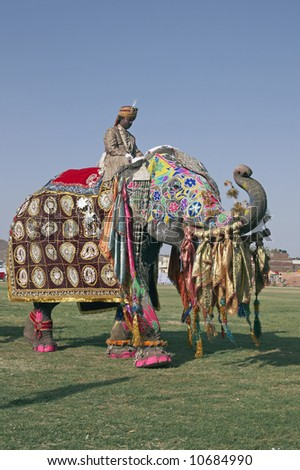 Decorated elephant with trunk raised in salute at the annual elephant festival in Jaipur, India