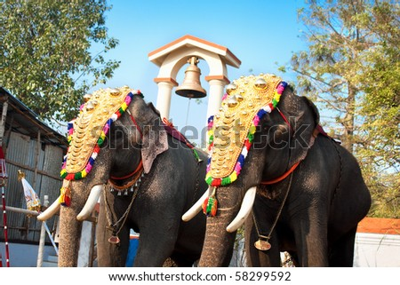 Decorated elephants for parade at the annual festival in Siva Temple, Cochin, India - stock photo