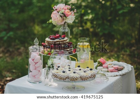 decorated sweet table for summer wedding picnic with sweets, cupcakes, pie and lemonade