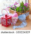 Decoration of balcony hyacinths bellis and primrose  - stock photo
