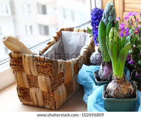 Decoration of balcony spring flowers - stock photo