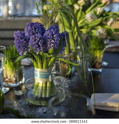 decoration of dining table. bouquet of blue hyacinth in vase of glass. Selective focus - stock photo