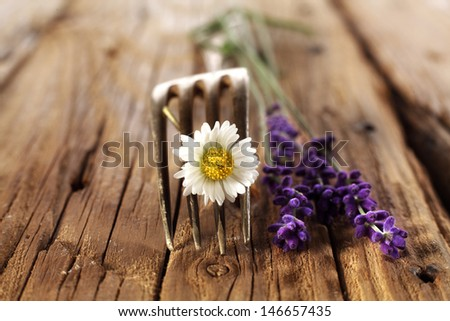 decoration of fork and lavender  - stock photo