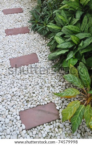 Decoration of plant in stone garden - stock photo