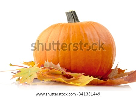 Decoration of pumpkin for thanksgiving day with autumn leaves isolated on white background - stock photo