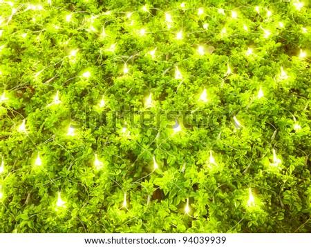 Decoration on plant - stock photo