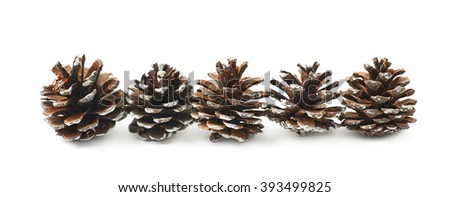Decorational pine cones isolated