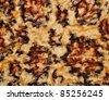 Decorative background - leopard skin - stock photo