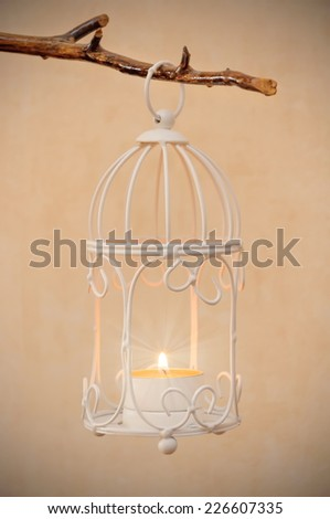 decorative bird cage hanging on branch with burning candle inside - stock photo