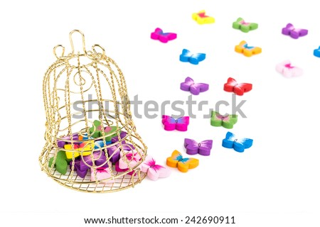 Decorative Cage and Butterflies - stock photo