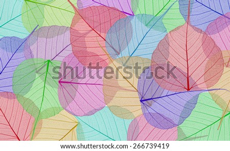 Decorative colorful skeleton leaves background - stock photo