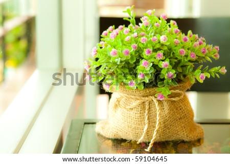 Decorative flower - stock photo