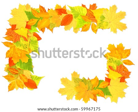 Decorative frame from bright autumn leaves
