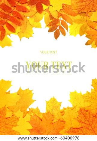 Decorative frame from bright autumn leaves - stock photo