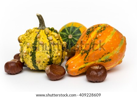decorative gourd on white background - stock photo