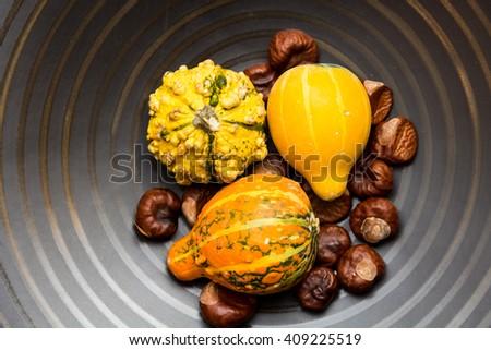 decorative gourds on dark background - stock photo