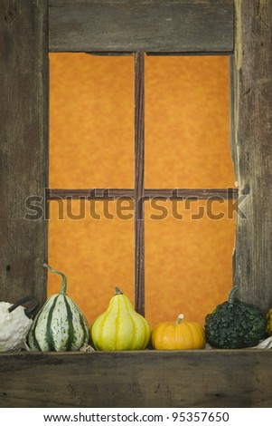 Decorative gourds sitting on a window ledge of an old barn with orange curtain hanging on the window.