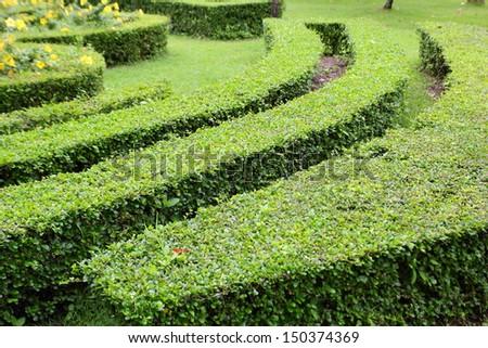 Decorative green park. - stock photo
