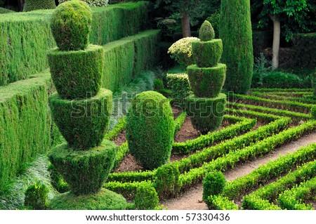 Decorative green park - Botanical garden Funchal, Madeira - stock photo