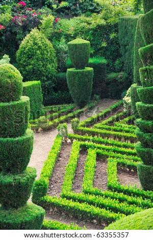 Decorative green park ? Botanical garden Funchal, Madeira - stock photo