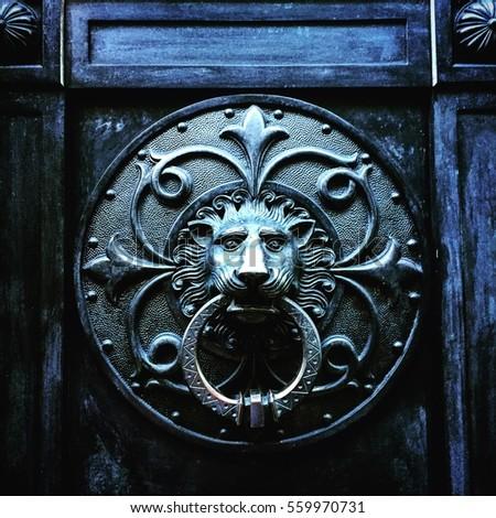 Decorative iron lion door knocker.  sc 1 st  Shutterstock & Door Knocke Lion Head Stock Photo 216876976 - Shutterstock pezcame.com