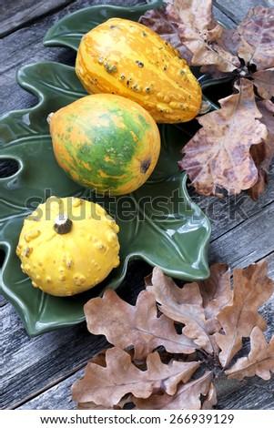 Decorative mini pumpkins on wooden background - stock photo
